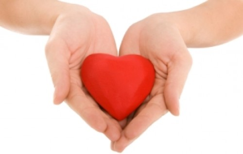 heart-in-palms10